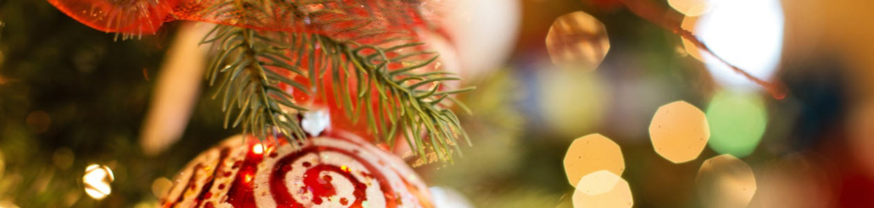 Christmas lunch and Christmas parties at The Royal Oak